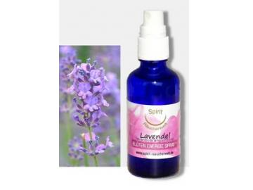 Lavendelblüten Spray | Aura Spray