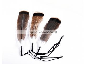 Wild-Truthahn Räucherfeder dunkel   Spirit-Räucherwelt